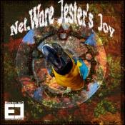 1001048 Net.Ware Jester's Joy 468